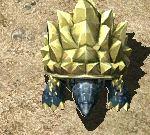 晶矿龟.jpg